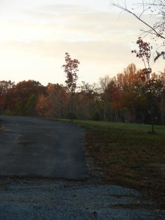 fall-driveway